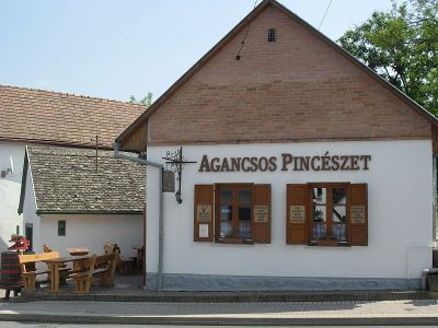 agancsos vineyard