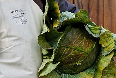 bodvaszilas cabbage festival