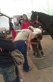 aggtelek farrier competition